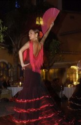 Flamenco and gypsy